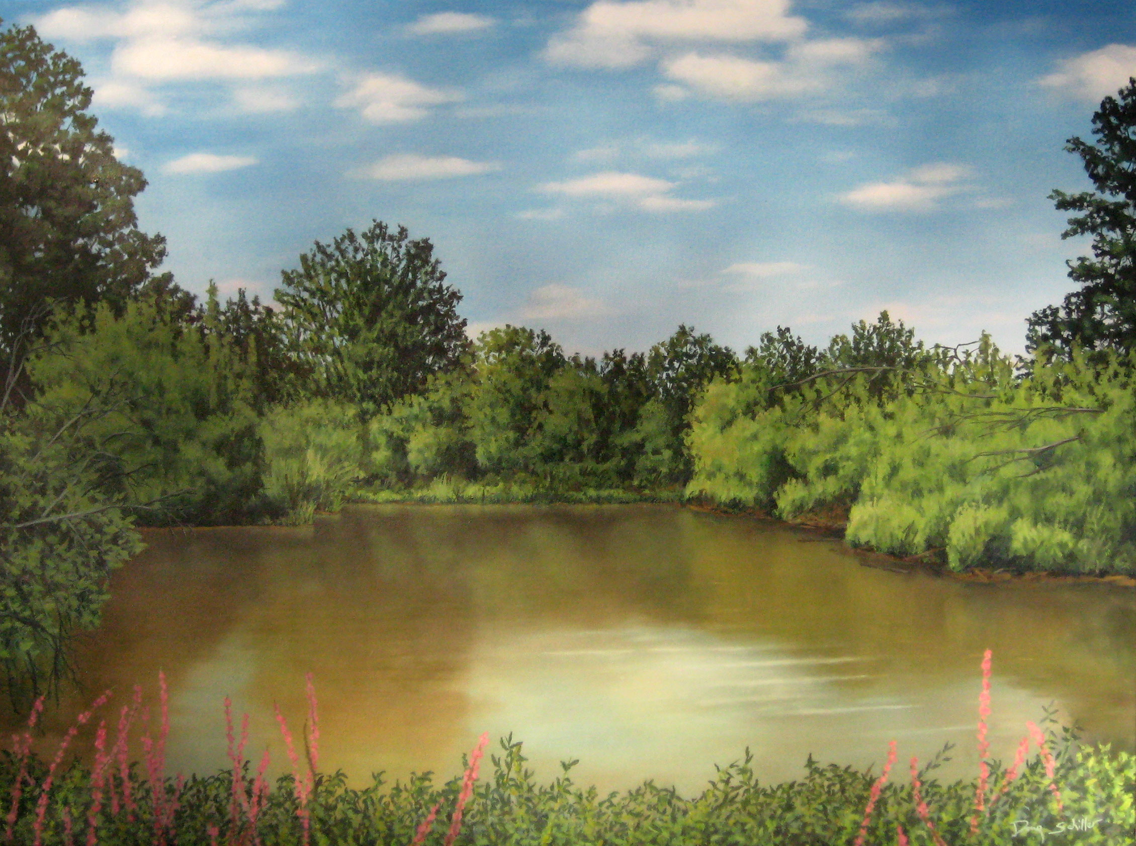 Doug Schiller, The Great Swamp, Branta Pond