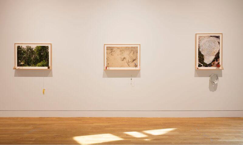 works from Mathew Jensen: Park Wonder