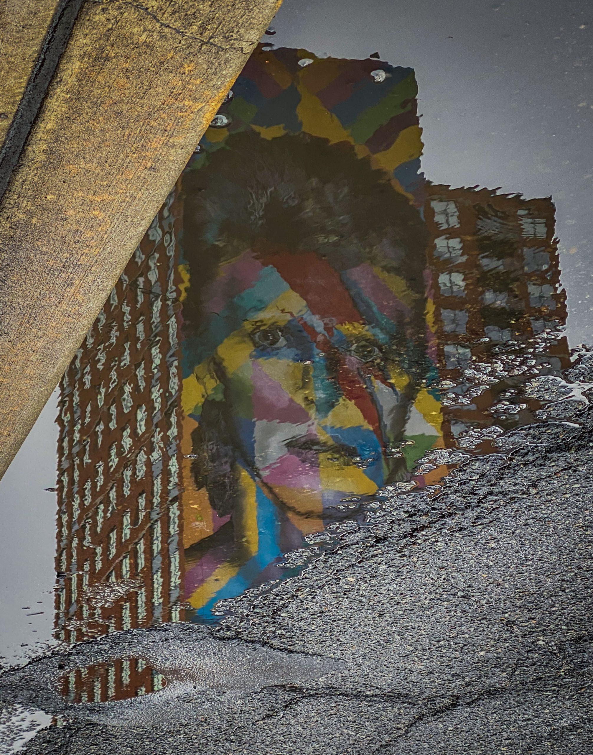 "image of Parvathi Kumar's piece ""Face Oddity"""