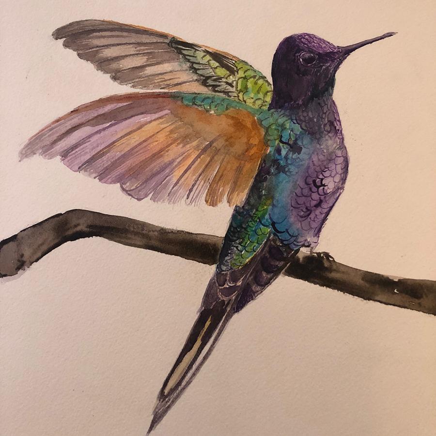 108 Hummingbirds by Rasika Reddy