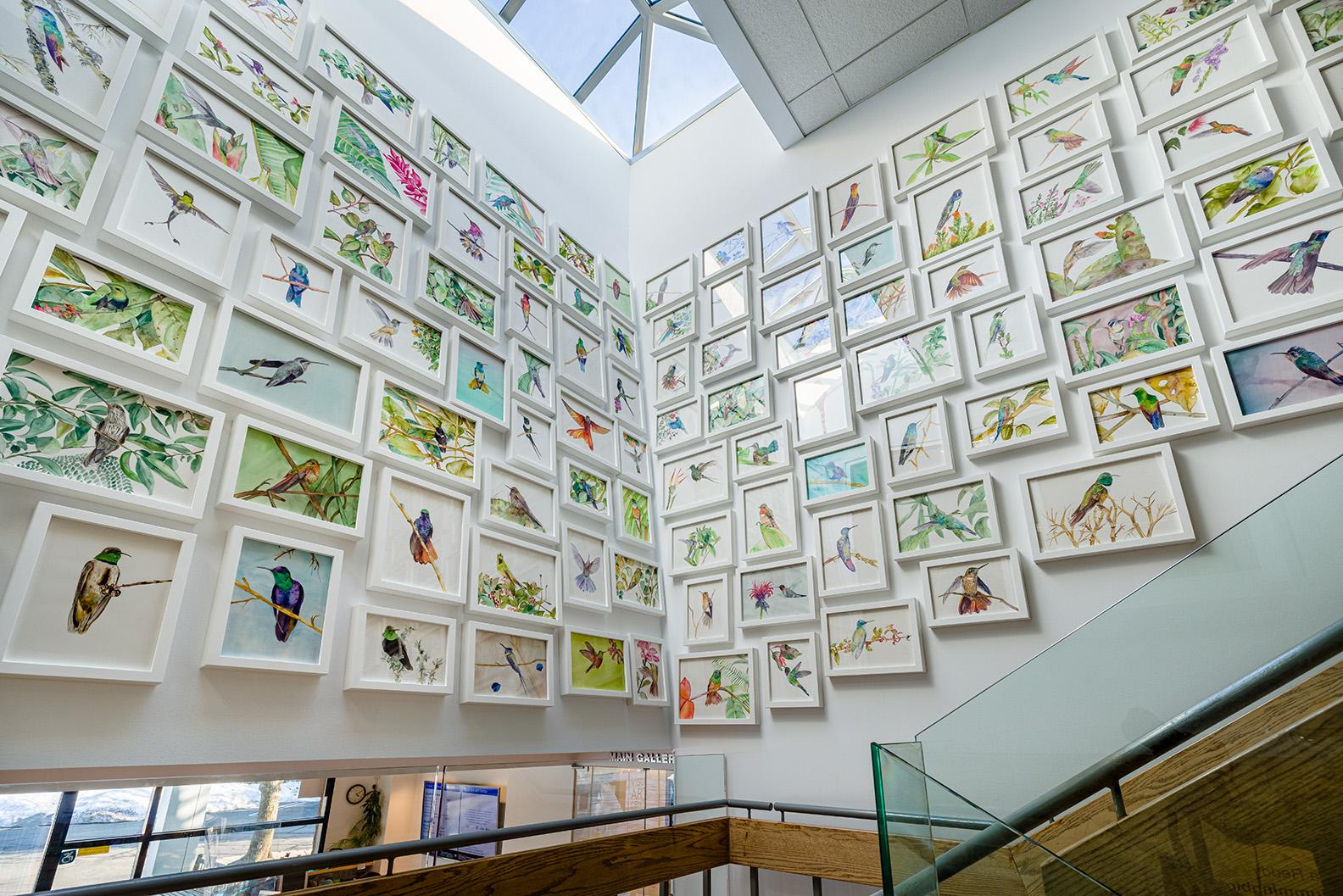 Installation view of 108 Hummingbirds